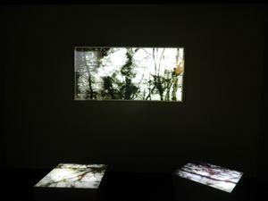 &quot&#x3B;Les migrations de Carole Benzaken&quot&#x3B; : une remarquable proposition du musée des beaux-arts de Nancy (54)