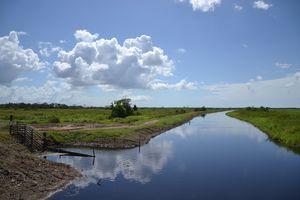 Georgetown (Guyana) - Nieuw Nickerie (Suriname) - 307 km - Derniers jours au Guyana