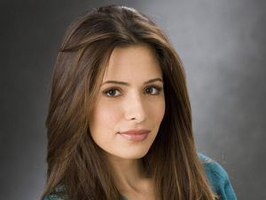 Sarah Shahi de retour dans Person Of Interest