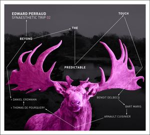 """Edward PERRAUD SYNAESTHETIC TRIP 02 :           """"Beyond the Predictable Touch"""" (Quark / l'autre distribution)"""
