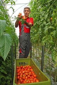 Dispositif ADEMA : Une formation pour découvrir les métiers de l'agriculture