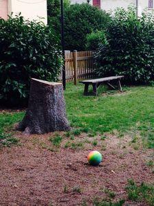 Tagliati gli alberi morti nel giardino del Municipio.