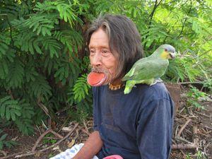 Brésil : Les tapayuna