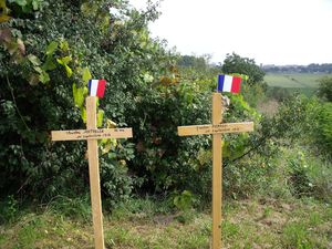 Wooden crosses for WW1 victims