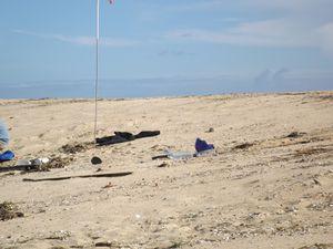 Le sable, ressource naturelle la plus consommée après l'eau, son extraction menace-t-elle nos plages?