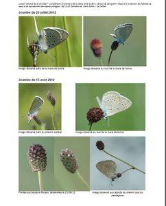Déviation routière St Aubin- Le Taillan Médoc: Victoire juridique en Gironde : Papillons 1 – bitume 0