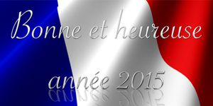 Tous nos voeux pour 2015 !