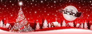 Joyeux Noël et Bonnes Fêtes de fin d'année !!