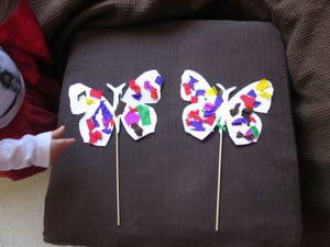 atelier papillons