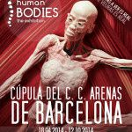 Exposition : Human Bodies