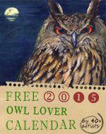 Calendrier gratuit My Owl barn 2015