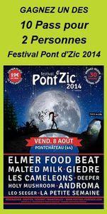 Gagnez vos places Pont d'Zic 2014 avec Stefline Radio