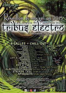 Gagnez vos places pour le Nouvel An 2015 (Tribus Electro)