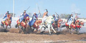 Les «arts équestres traditionnels» s'invitent au Salon du cheval