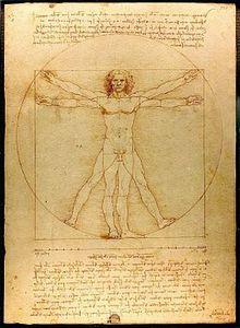 """""""L'homme de Vitruve"""" Léonard de Vinci"""