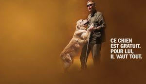 Association les chiens guides d'aveugle de l'ouest et de Bretagne