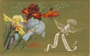 Iris -2362- Birthday greetings. Oiseau. USA 1910.