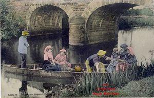 Iris -3515- La vie aux champs : cueillette des iris. France. 1910.