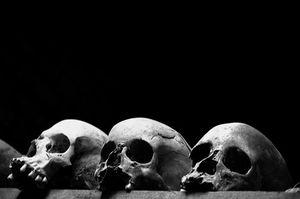Défaite des criminels de guerre rwandais au Congo et renforcement d'Africom