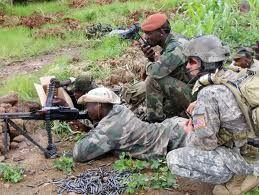 Les Etats-Unis veulent créer un autre OTAN en Afrique (Avic)