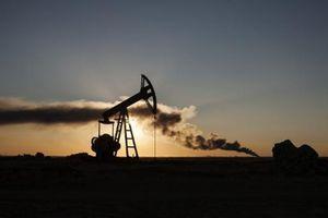 La France et le Royaume-Uni bloqueraient la coordination européenne visant à empêcher l'achat de pétrole à l'Etat islamique par des pays européens