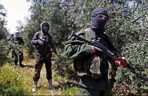 Le Hezbollah attaque l'occupant israélien aux fermes de Chebaa (Voltaire.net)