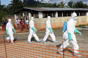 Ébola : « C'est une affaire politique: une épidémie (extra-africaine) sans morts n' est pas crédible » (La Pluma)