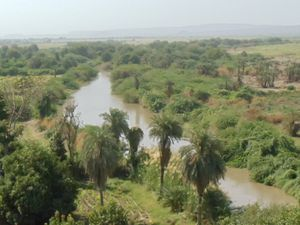 Ethiopia : Large scale killing and deportation of Somali-Issa people in the Awash River (Farmlandgrab)