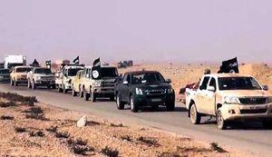 L'Etat islamique a envoyé 1500 combattants de Mossoul dans la province d'Anbar grâce à des convois militaires qui n'ont pas été visés par la coalition internationale (Shafaq News)