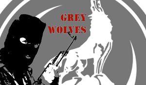 Erdogan envoie l'organisation terroriste des &quot&#x3B;loups gris&quot&#x3B; à la frontière avec la Russie