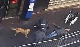Selon la police allemande, l'assaillant d'un commissariat parisien n'a pas de lien avec un réseau islamiste (AFP)