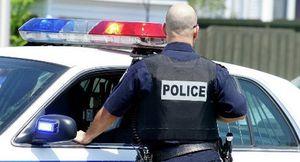 Etats-Unis : un policier viré pour avoir refusé de tuer un Noir armé (Afrik.com)