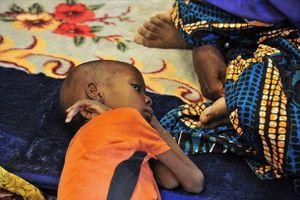 La crise humanitaire se poursuit au Mali, loin des projecteurs (Irin)