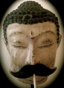 La moustache musquée