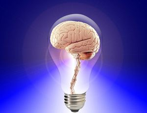 Les intelligences multiples...