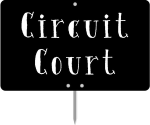 Circuit court – article 905 du code de procédure civile