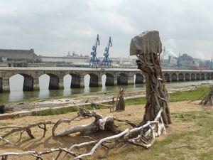 Entre plage et ville, la 5e Biennale art contemporain d'Anglet