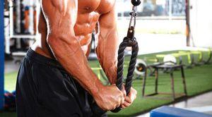 Beginner Bodybuilding Program!