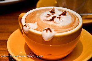 Chat en forme de mousse dans une tasse de café