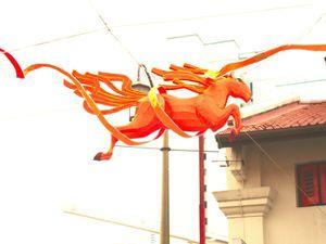 L'année du cheval!!!