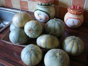 melon charantais , précose du roc