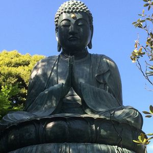 Les 25 citation de Bouddha