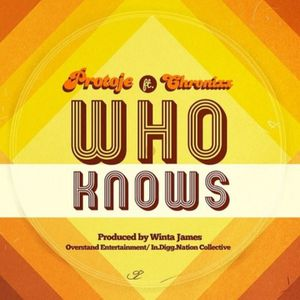 Interlude Musical : Protoje feat Chronixx &quot&#x3B;  Who Knows &quot&#x3B;