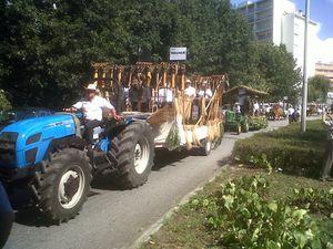 Le Cortejo do Linho, 6 septembre 2015