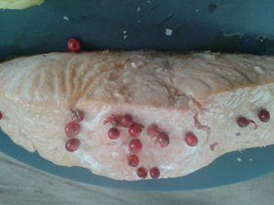 Pavé de saumon à l'unilatéral