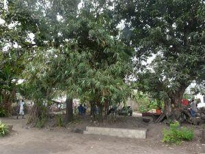 Curiosités locales de Selembao