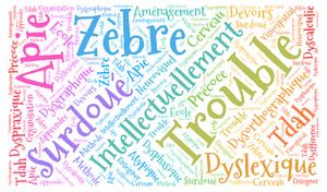 EIP, dyslexie, dyspraxie, TDAH : Mieux se connaitre pour mieux apprendre