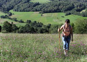 Balisage des sentiers de randonnées