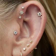select from the Cartilage Earrings Collections