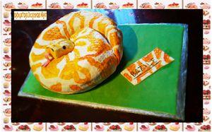 Gâteau Boa :